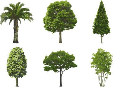 Tree brushes for Photoshop