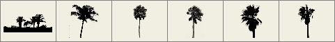 Palm tree brushes preview