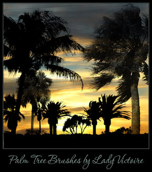 Palm tree brushes