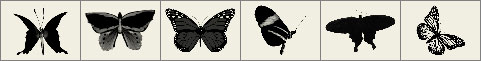 Butterfly brushes preview