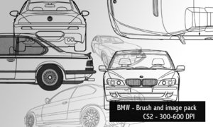 BMW brushes