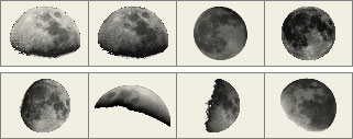 Moon brushes preview
