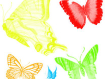 Butterfly brushes for Photoshop